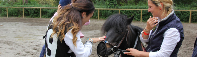 foto sne pony 2